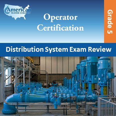 Distribution Exam Preparation Grade 5